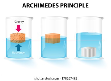 Archimedes' principle. The buoyant force acting on an object is equal to the weight of the displaced fluid