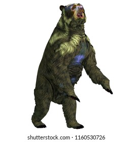 Arctodus Bear Rearing Up 3D illustration - Arctodus was an omnivorous short-faced bear that lived in North America during the Pleistocene Period.