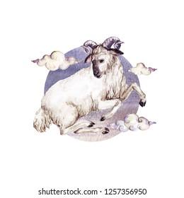 Aries - Zodiac Symbol. Watercolor Illustration.