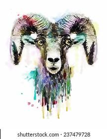 aries/horoscope/T-shirt Graphics/ram