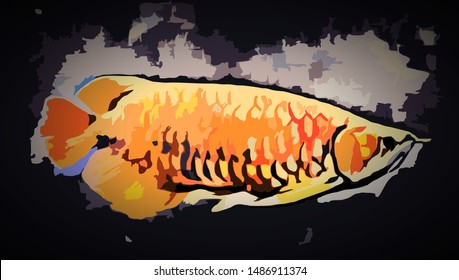 Arowana fish, beautiful Arowana fish, charming Arowana fish, illustration