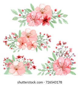 Arrangement of flowers, leaves and branches traditional drawing and painting by watercolor on white background