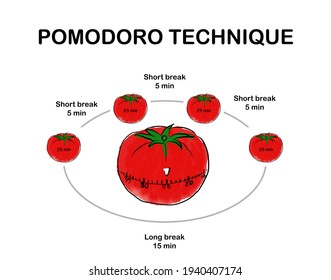 Art design red tomatoes on white background pomodoro time manage concept for business presentation or online article. Explanation Pomodoro technique time management method.