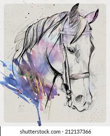 art drawn horse