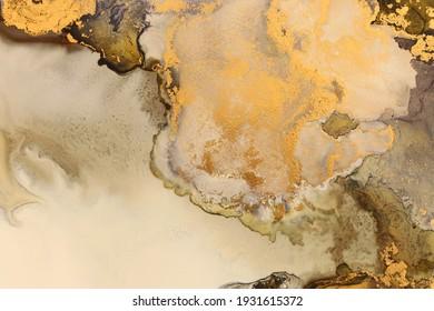 Kunstfotografie abstrakter flüssiger Kunstmalerei mit Alkoholfarbe, Schwarz-Gold-Farben