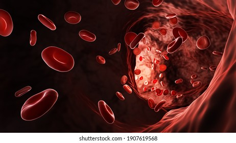 Artery or vein bloodstream with red blood cells or erythrocytes 3D rendering illustration. Cardiovascular system, anatomy, medicine, science, microbiology concepts.