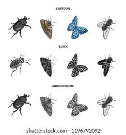 Arthropods insect beetle, moth, butterfly, fly. Insects set collection icons in cartoon,black,monochrome style bitmap symbol stock isometric illustration web.