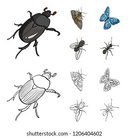 Arthropods insect beetle, moth, butterfly, fly. Insects set collection icons in cartoon,outline style bitmap symbol stock isometric illustration web.