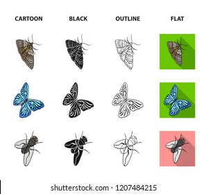 Arthropods insect beetle, moth, butterfly, fly. Insects set collection icons in cartoon,black,outline,flat style bitmap symbol stock isometric illustration web.