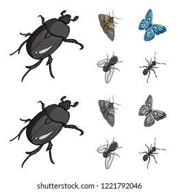 Arthropods insect beetle, moth, butterfly, fly. Insects set collection icons in cartoon,monochrome style bitmap symbol stock isometric illustration web.