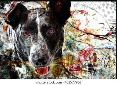 Artistic Dog Portrait Collage Illustration