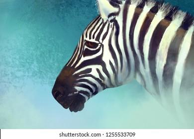 Artistic portrait of a zebra. Digital painting