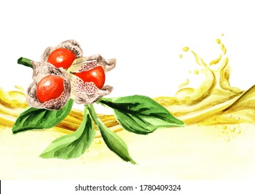 Ashwagandha or Indian ginsengherbal oil wave. Hand drawn watercolor illustration  isolated on white background