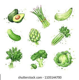 Assortment of green foods, watercolor vegtables illustration