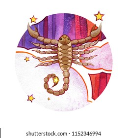 Astrological sign of the zodiac Scorpion, watercolor in retro style, on a round  pattern background