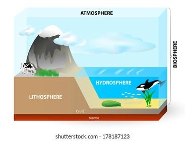 Atmosphere, biosphere, hydrosphere and lithosphere