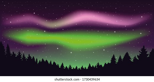 aurora borealis beautiful polar lights in stary sky in forest illustration