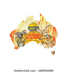 Australia map volunteer fire service, koala and kangaroo are cry. painting watercolor.