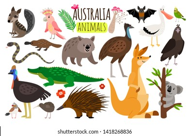 Australian animals. animal icons of Australia, kangaroo and koala, wombat and ostrich emu, platypus and echidna in cartoon style isolated on white background