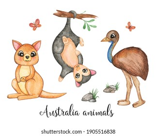 Australian animals clip art, watercolor animals isolated, wild nature, kangaroo, emu, opossum, little wild friends clipart