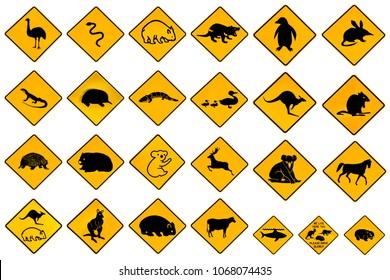 Australian warning signs for wildlife animals: Emu, Echidna, Tasmanian Devil, Wombat, Kangaroo, Penguin, Shark, Ducks Snake Rat Deer reptiles and vehicles. Isolated on white and copy space.