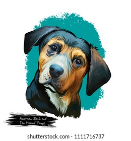 Austrian Black and Tan Hound puppy dog breed digital art illustration isolated on white. Popular pup portrait with text. Cute pet hand drawn portrait. Graphic clip art design