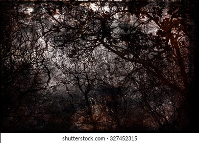 Autumn grunge: bare trees on a black / grey / dark background. Mystery, magic. Enchanted, gloomy forest. Danger, fear, anxiety / depression concept.