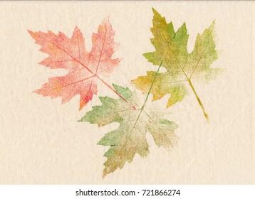 Autumn leaves printed on canvas