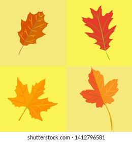 autumn leaves set. simple cartoon flat style,  illustration.