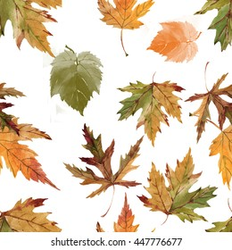 autumn leaves watercolor pattern on white