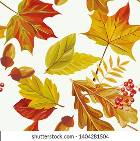 Autumn maple, ashberry, acorn, oak leaves watercolor painting seamless pattern illustration on the white background