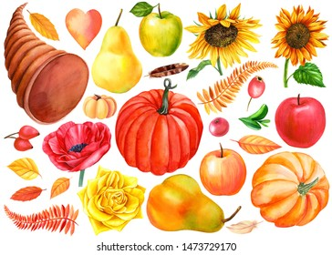 autumn set of dry leaves, flowers, vegetables and fruits on an isolated white background, watercolor painting, hand drawing