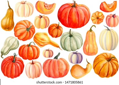autumn set of pumpkins on an isolated white background, watercolor painting, hand drawing