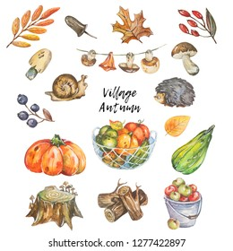 Autumn set of watercolor nature elements.
