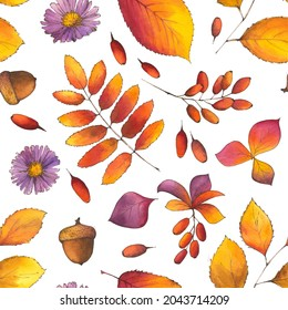 Autumn Watercolor botanical Seamless Pattern with fall leaves, acorns, aster flowers, branches of berberries on white background. Hand-drawn endless illustration  for textile, wallpapers, wrapping