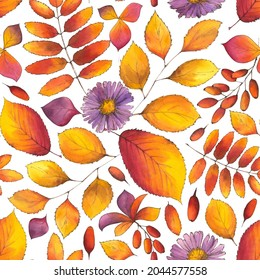 Autumn Watercolor Seamless Pattern with fall leaves, aster flowers, branches of berberries on white background. Hand-drawn dense endless illustration for textile, wallpapers, fabric and wrapping paper