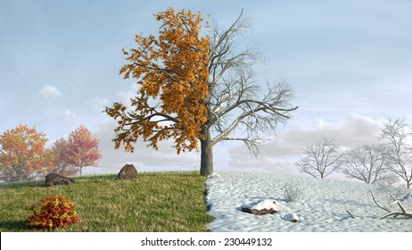 from autumn to winter