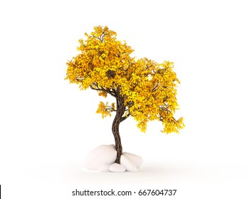 Autumnal element, orange isolated tree on a white background. 3d illustration, 3d rendering.