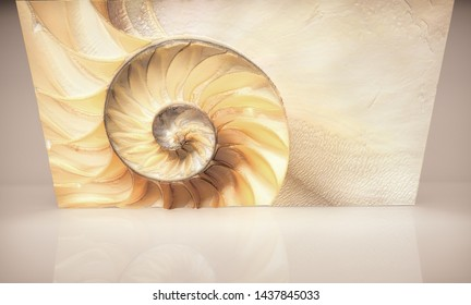 Сut away of a chambered nautilus shell, mother of pearl shell, popular cephalopod. 3D illustration