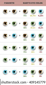 Baby eye color predictor. Likelihood of eyes color of the baby. 3d illustration.