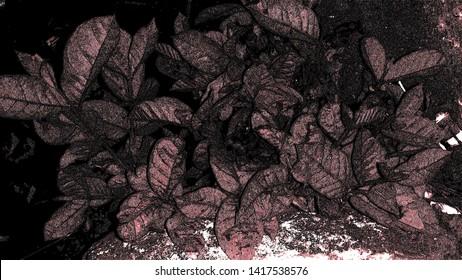 Background abstrak color and dark