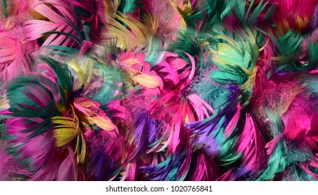 background of colorful chicken feathers