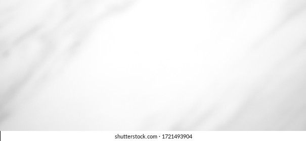 Background gray white. Grey light beauty background