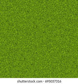 Background of green grass. Texture green lawn