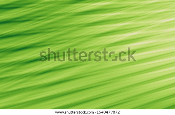 Background green texture material nature pattern