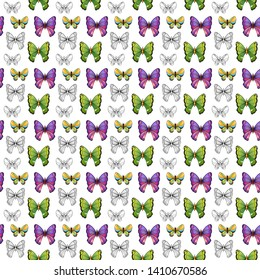 Background with large tropical multi-colored butterfly. Hand drawing. For print. Scrapbook paper.