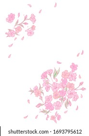 Background material designed with a cherry blossom motif