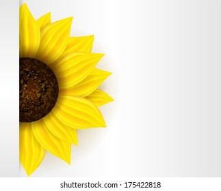 Background with part of yellow sunflower and copyspace.
