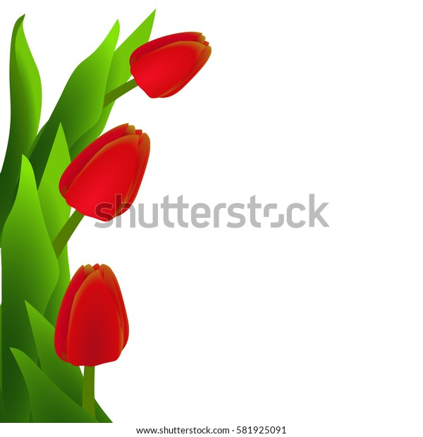 Background with red tulips for women's day.