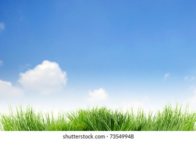 background  sky cloudy  and grass